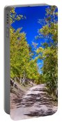 Back Country Road Take Me Home Colorado Portable Battery Charger by James BO  Insogna