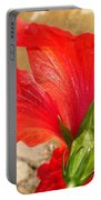 Back Of A Red Hibiscus Flower Against Stone Portable Battery Charger