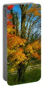 Back Road Beauty Portable Battery Charger
