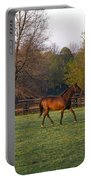 Back To The Barn Portable Battery Charger