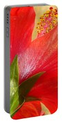 Back View Of A Beautiful Bright Red Hibiscus Flower Portable Battery Charger