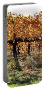 Backlit Autumn Vineyard Portable Battery Charger
