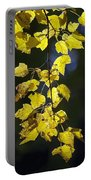 Backlit Leaves Of Autumn Portable Battery Charger