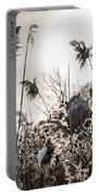 Backlit Winter Reeds Portable Battery Charger