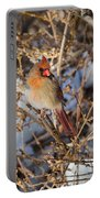 Backyard Birds Female Nothern Cardinal Portable Battery Charger