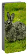 Backyard Bunny In Black White And Green Portable Battery Charger