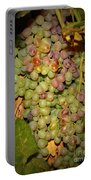 Backyard Garden Series -hidden Grape Cluster Portable Battery Charger
