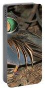 Baikal Teal Portable Battery Charger