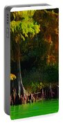 Bald Cypress 3 - Digital Effect Portable Battery Charger