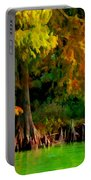Bald Cypress 4 - Digital Effect Portable Battery Charger