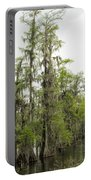 Bald Cypress - Axodium Distichum Portable Battery Charger