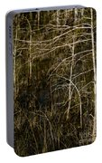 Bald Cypress Trees Portable Battery Charger