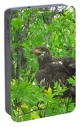 Bald Eagle In A Tree  Portable Battery Charger