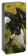 Bald Eagle In Perch Wildlife Rescue Portable Battery Charger