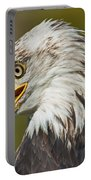 Bald Eagle... Portable Battery Charger