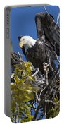 Bald Eagle On Nest Near The Oxbow Portable Battery Charger