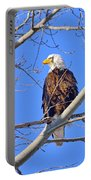 Bald Eagle Perched Portable Battery Charger