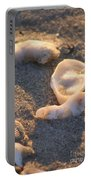 Bald Head Island Shells Portable Battery Charger