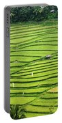 Bali Indonesia Rice Fields Portable Battery Charger