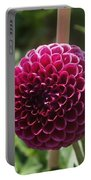 Ball Flower Portable Battery Charger