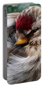 Ball Of Feathers Portable Battery Charger by Christina Rollo