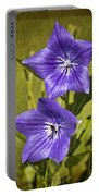 Balloon Flower Portable Battery Charger by Marcia Colelli