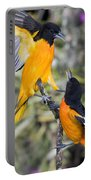 Baltimore Orioles Portable Battery Charger