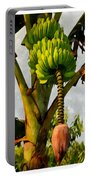 Banana Trees With Fruits And Flower In Lush Tropical Garden Portable Battery Charger