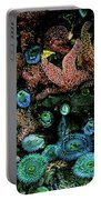 Bandon Beach Oregon Pacific Tidal Pool Portable Battery Charger