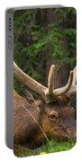 Banff Elk Portable Battery Charger