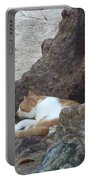 Barbados Beach Cat Portable Battery Charger