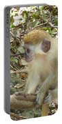 Barbados Green Monkey Portable Battery Charger
