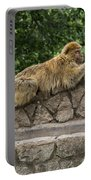 Barbary Macaques Portable Battery Charger