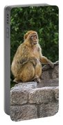Barbary Macaque Portable Battery Charger