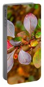 Barberry Portable Battery Charger