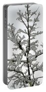 Bare Branches With Snow Portable Battery Charger