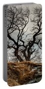 Bare Tree On The Hill Portable Battery Charger