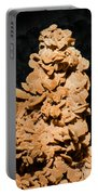 Barite Portable Battery Charger by Millard H. Sharp