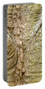 Bark Of Silk Floss Tree Background Texture Pattern Portable Battery Charger