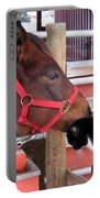 Barn Buddies Portable Battery Charger