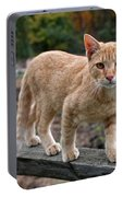 Barn Cat Portable Battery Charger