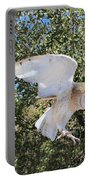 Barn Owl 2 Portable Battery Charger
