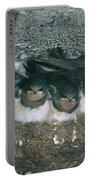 Barn Swallows Portable Battery Charger by Hans Reinhard