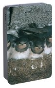 Barn Swallows Portable Battery Charger
