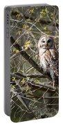 Barred Owl Square Portable Battery Charger