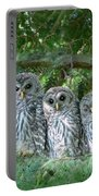 Barred Owlets Nursery Portable Battery Charger by Jennie Marie Schell