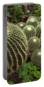 Barrel Cacti Portable Battery Charger