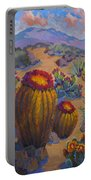 Barrel Cactus In Warm Light Portable Battery Charger
