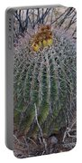 Barrel Cactus With Fruit Portable Battery Charger