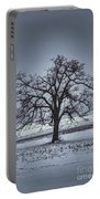 Barren Winter Scene With Tree Portable Battery Charger by Dan Friend
